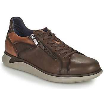 Scarpe Uomo Sneakers basse Fluchos COOPER Marrone