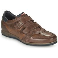 Scarpe Uomo Sneakers basse Fluchos DANIEL Marrone