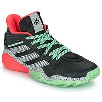 Scarpe Pallacanestro adidas Performance HARDEN STEPBACK Nero / Grigio / Verde