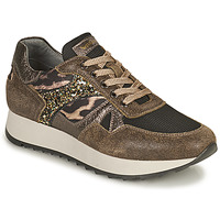 Scarpe Donna Sneakers basse NeroGiardini AVOCATO Kaki / Leopard