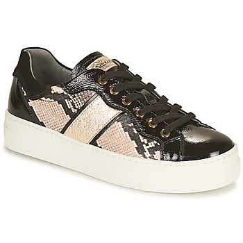 Scarpe Donna Sneakers basse NeroGiardini BETTO Nero / Oro