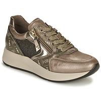Scarpe Donna Sneakers basse NeroGiardini GIROMONO Oro