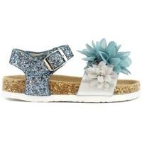 Scarpe Bambina Sandali Colors of California HC.3114  SUG Blu