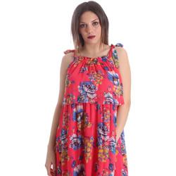 Abbigliamento Donna Vestiti Gaudi 911FD15039 Rosa