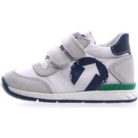 Scarpe Unisex bambino Sneakers basse Falcotto 2014941 01 Grigio