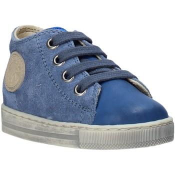 Scarpe Unisex bambino Sneakers basse Falcotto 2014600 12 Blu
