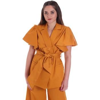 Abbigliamento Donna Giacche / Blazer Cristinaeffe 0308 2491 Giallo
