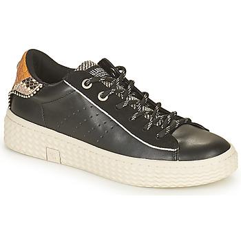 Scarpe Donna Sneakers basse Palladium Manufacture TEMPO 04 SYN Nero