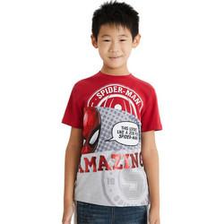 Abbigliamento Bambino T-shirt maniche corte Desigual 21SBTK08 Rossa