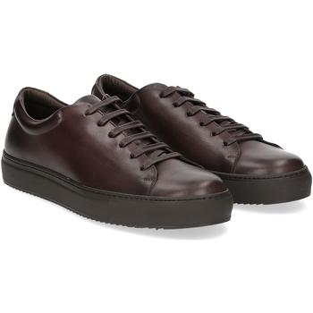 Scarpe Uomo Sneakers Griffis Griffi's sneaker 732 pelle testa di moro TESTA DI MORO