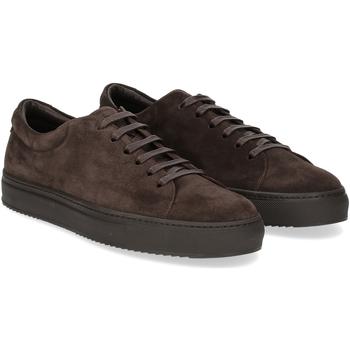 Scarpe Uomo Sneakers Griffis Griffi's sneaker 732 camoscio testa di moro TESTA DI MORO