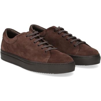 Scarpe Uomo Sneakers Griffis Griffi's sneaker 732 camoscio marrone MARRONE