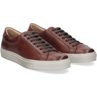 Scarpe Uomo Sneakers Griffis Griffi's sneaker 1102 pelle forata marrone MARRONE