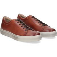 Scarpe Uomo Sneakers Griffis Griffi's sneaker 732 pelle cuoio CUOIO