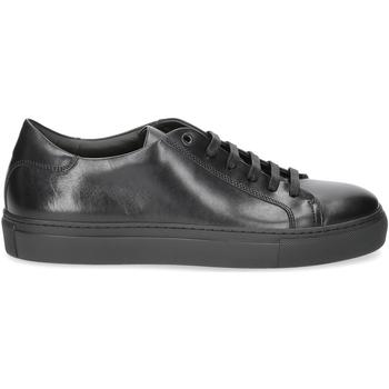 Scarpe Uomo Sneakers Corvari sneaker 1215 pelle nera NERO