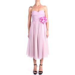 Abbigliamento Donna Abiti lunghi Hanita H.V2816.3126 Al Polpaccio Donna Rosa Rosa