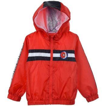 Abbigliamento Bambino giacca a vento Spiderman Giacca Multicolore