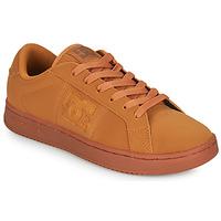 Scarpe Uomo Sneakers basse DC Shoes STRIKER Camel