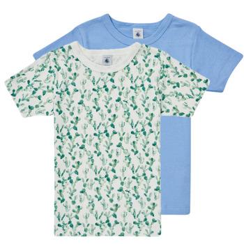 Abbigliamento Bambino T-shirt maniche corte Petit Bateau LOLITA Multicolore
