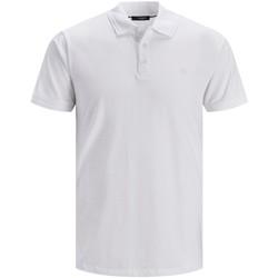 Abbigliamento Uomo Polo maniche corte Premium 12184709 Multicolore