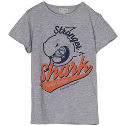 Abbigliamento Bambino T-shirt maniche corte Frankie Garage T-SHIRT STAMPA SHARK RAGAZZO grigio (GRIGIO)