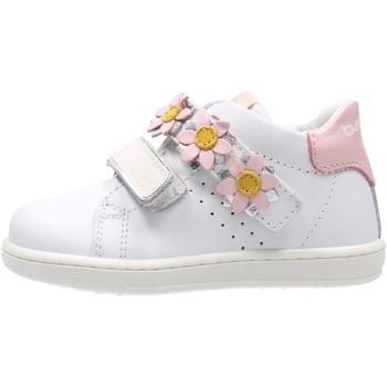 Scarpe Bambino Sneakers basse Balducci - Polacchino bianco CITA4501B BIANCO