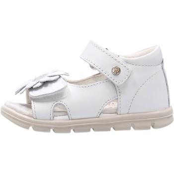Scarpe Bambina Sandali Falcotto - Sandalo bianco BEIA-0N01 BIANCO