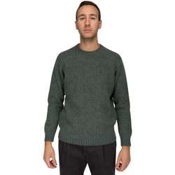 Abbigliamento Uomo Felpe Della Ciana MAGLIA IN SHETLAND Verde