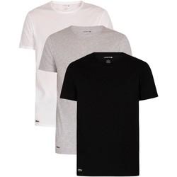 Abbigliamento Uomo T-shirt maniche corte Lacoste Confezione da 3 t-shirt Essentials Lounge multicolore