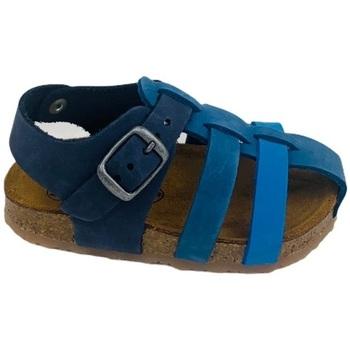 Scarpe Uomo Sandali Plakton 855492 ROYAL Blu
