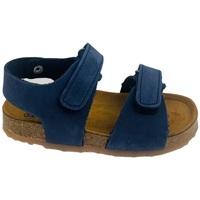 Scarpe Uomo Sandali Plakton 855093 BLU Blu