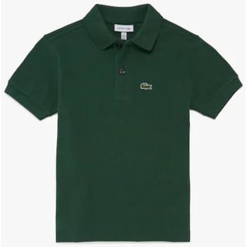 Abbigliamento Unisex bambino Polo maniche corte Lacoste JPJ2909 Verde