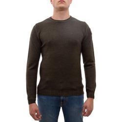 Abbigliamento Uomo Maglioni Blauer 19WBLUM01451 verde