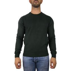 Abbigliamento Uomo Maglioni Peuterey PEU2916 verde
