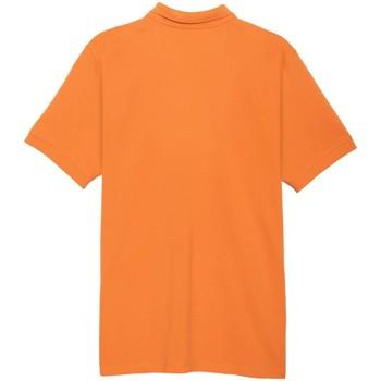 Abbigliamento Polo maniche corte Klout  Naranja