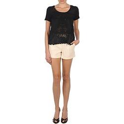 Abbigliamento Donna Shorts / Bermuda Stella Forest YSH003 Ecru