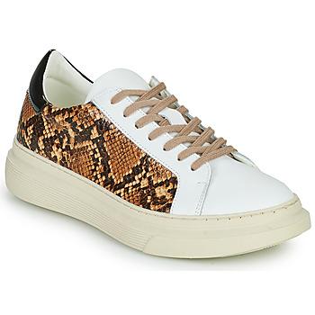 Scarpe Donna Sneakers basse Betty London PAROLE Bianco