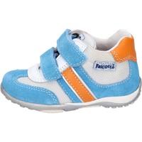 Scarpe Bambino Sneakers basse Falcotto BH196 Blu