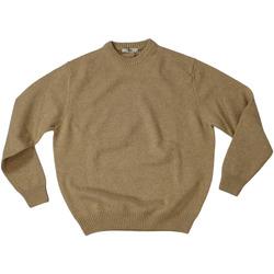 Abbigliamento Uomo Maglioni Ingram ATRMPN-27817 Beige