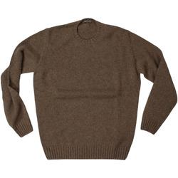 Abbigliamento Uomo Maglioni Ferrante ATRMPN-27821 Marrone