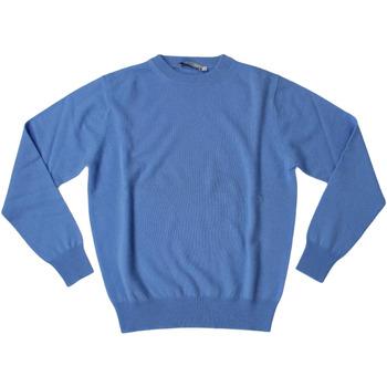 Abbigliamento Uomo Maglioni Ingram ATRMPN-27822 Blu