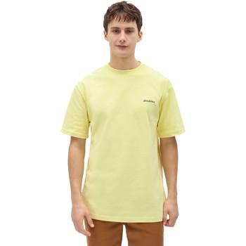 Abbigliamento Uomo T-shirt maniche corte Dickies DK0A4X9OB541 Giallo