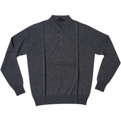 Abbigliamento Uomo Polo maniche lunghe Ferrante ATRMPN-27875 Grigio