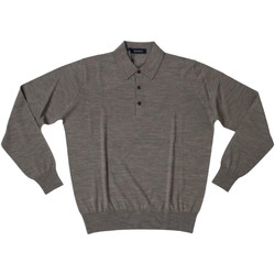 Abbigliamento Uomo Polo maniche lunghe Ferrante ATRMPN-27894 Marrone