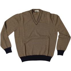 Abbigliamento Uomo Maglioni Ingram ATRMPN-27899 Marrone