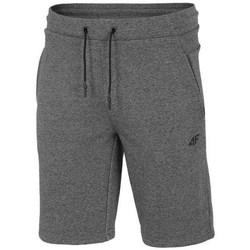 Abbigliamento Uomo Shorts / Bermuda 4F SKMD014 Grigio