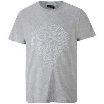 Abbigliamento Uomo T-shirt maniche corte Ed Hardy - Tiger glow t-shirt mid-grey Grigio