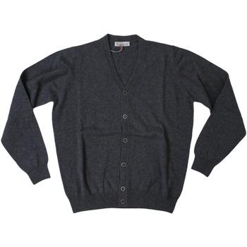 Abbigliamento Uomo Gilet / Cardigan Ferrante ATRMPN-27969 Grigio