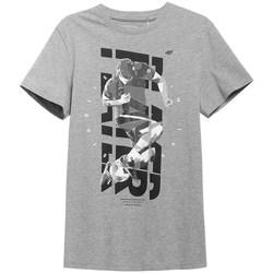 Abbigliamento Uomo T-shirt maniche corte 4F H4L21 TSM011 Grigio