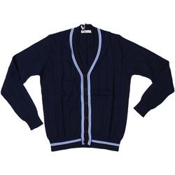 Abbigliamento Uomo Gilet / Cardigan Ferrante ATRMPN-28008 Blu